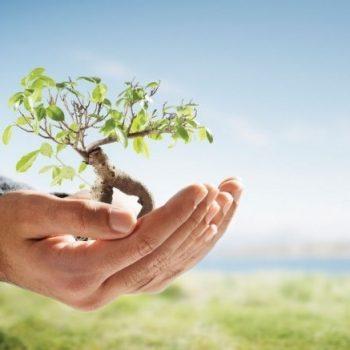 Пять принципов здоровой благотворительности